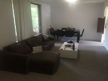 Flat share Macquarie university Macquarie Park Ryde Area Preview
