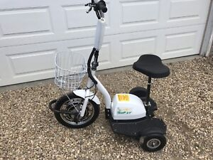 GoPET personal electric 3-wheeler