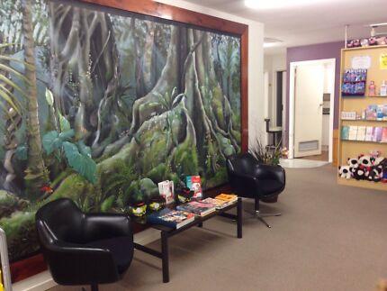 Dental Practice in Byron Hinterland Brisbane Region Preview