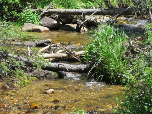 Colorado Placer Mine Gold Creek Mining Claim Creek Silver Panning Sluice