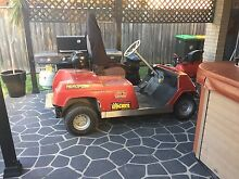 Air bagged petrol golf cart Albion Park Shellharbour Area Preview