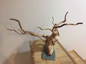 Big spider wood piece