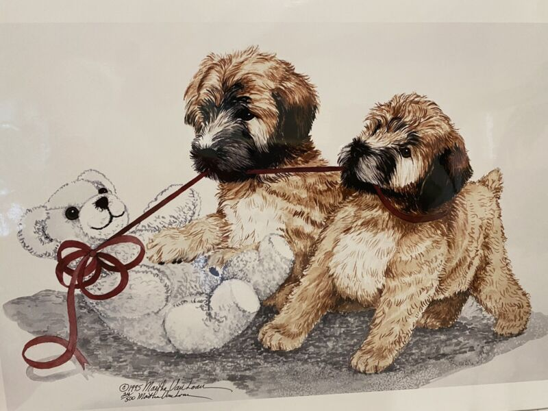 Soft Coated Wheaten Terrier Puppies Ltd Ed Print 11x14 By Van Loan