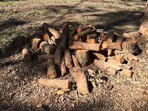 Free fire wood Yarramalong Wyong Area Preview