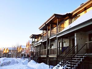 $675!!! New price for must see Condo à voir! 3 1/2~ Plateau