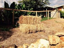 Rhodes grass hay feed mulch Redlynch Cairns City Preview