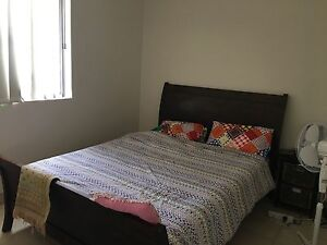 Roomshare preference Muslim lady Merrylands Parramatta Area Preview