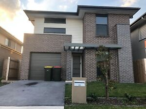 4 Bedroom House for rent in Schofields