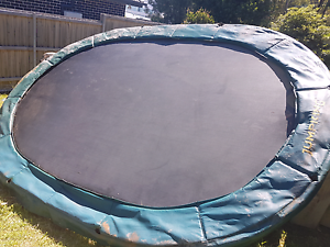 Trampoline Dee Why Manly Area Preview