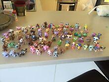 Littlest pet shop figurines Eden Hill Bassendean Area Preview