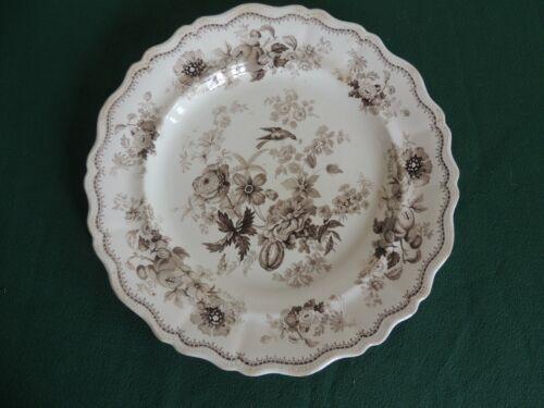 STUNNING 1830 Antique Transferware Brown BRITISH FLOWERS 10 3/8 Plate w Ridgway