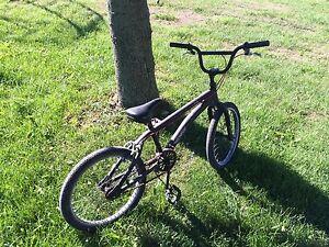 Evil Sims Bike