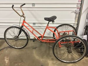 Worksman Adult Tricycle