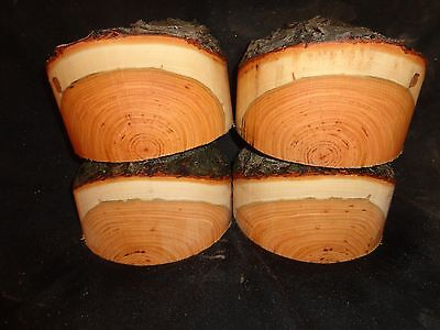 Free Ship Natural Edge Black Cherry Turning Bowl Blank Lathe 7  X 4 5   1 Pc