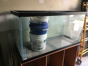 90 gallon fish tank