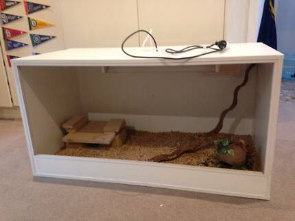 Large terrarium for sale (white melamine) WITH EXTRAS Caulfield North Glen Eira Area Preview