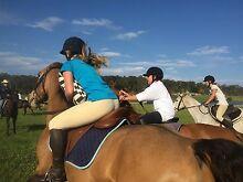 Kids Horse Riding camps Jilliby Wyong Area Preview