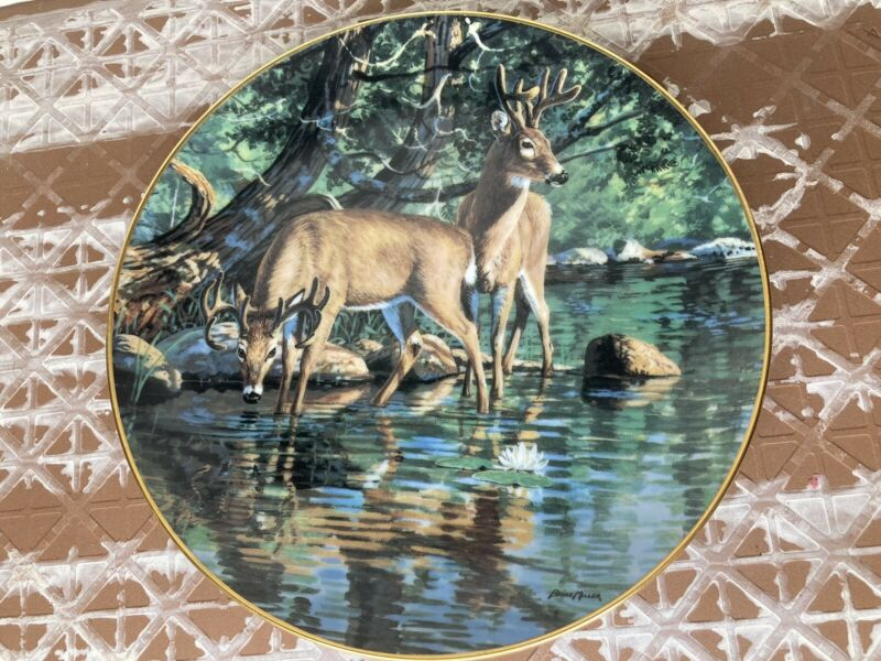 Velvet Reflections 1991 Collectors Plate By Bruce Miller Danbury Mint Deer Bucks