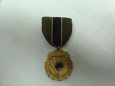 OLD RARE VINTAGE MEDAL AMERICAN LEGION ERVIN PETERSON SGT MAJOR 1973-1974
