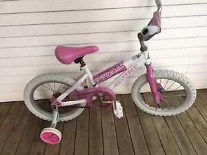 Girl Bicycle for 4-8