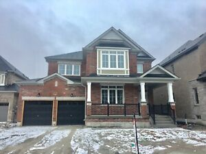 BRAND NEW 4 BEDROOMS HOUSE FOR RENT  IN INNISFIL