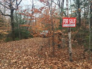 Cottage Lot with driveway - LaBelle