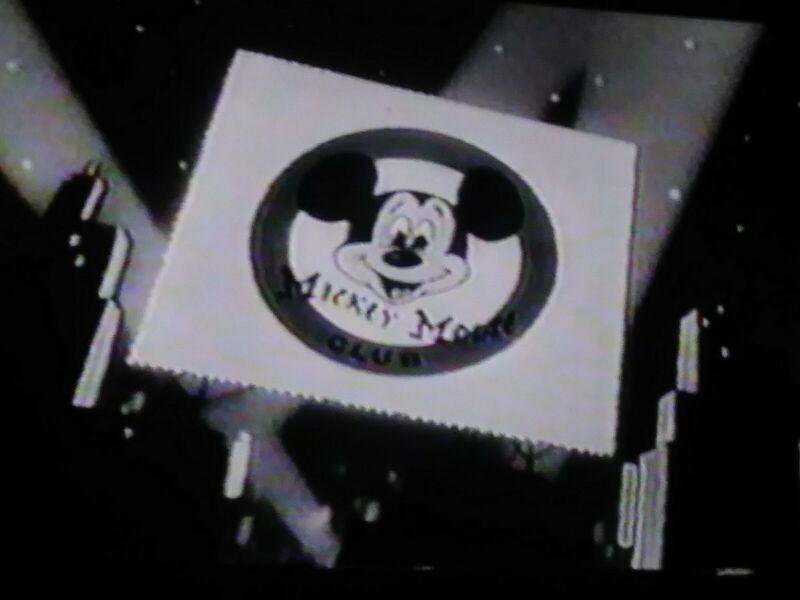 (J1)VHS Tape Sold as Blank. MICKEY MOUSE CLUB #3