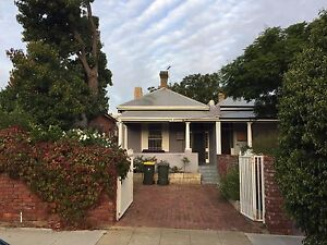 Large room in house - will suit vegetarian Perth Perth City Area Preview