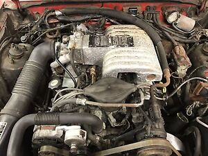 1986 GT mustang 5.0 ho engine
