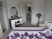 $100 a Week Room For Rent Females Only Stretton Brisbane South West Preview