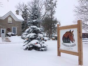 Outdoor horse board