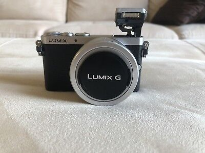 Panasonic LUMIX DMC-GM1K mirrorless Camera Body and Kit Lens (12-32mm)