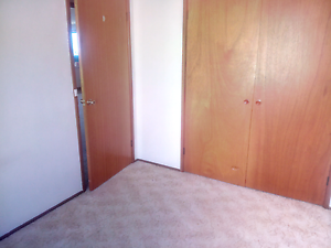 Housemate wanted Glenorchy Glenorchy Area Preview