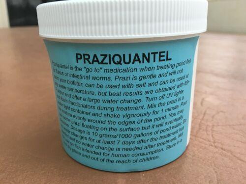 Koi-Cure for koi and goldfish Praziquantel 100 grams
