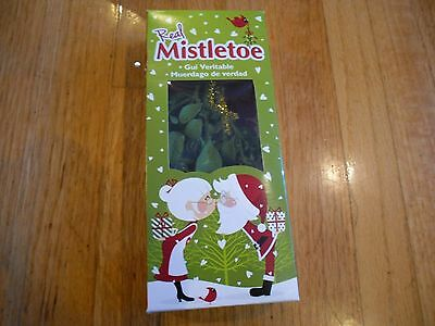 New  Holiday Decoration Real Mistletoe Plant Christmas Holiday Kissing