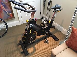 LIVESTRONG LS9.9IC Exercise Stationary Bike
