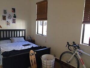 Paddington Terrace- room available Paddington Eastern Suburbs Preview
