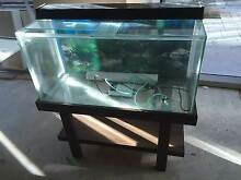 3 Ft' Fish Tank with Stand Northbridge Perth City Preview