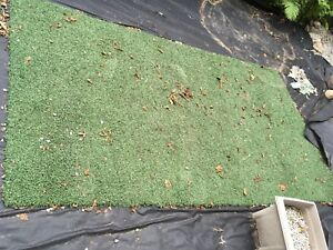 2 pieces of Artificial Turf