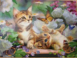 super schönes Bild, Katzen im 3D-Effekt, 40x30cm, neu