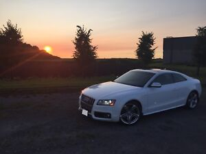 AUDI S5 SPORTS COUPE ALL WHEEL DRIVE