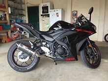 Yamaha YZF-R3 2015 Rowville Knox Area Preview