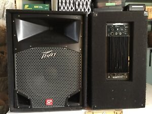 Peavey SP speakers $800 or make me an offer.