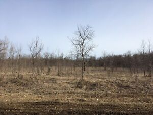 New acreage just outside of Portage