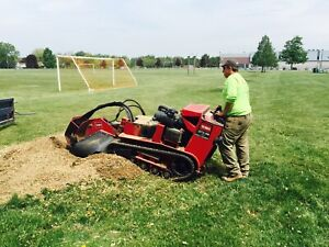 Professional tree services stump grinding!!!!