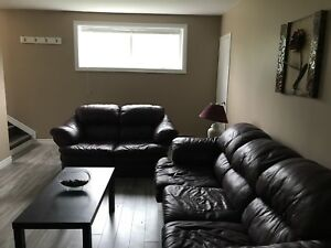 Two Fully furnished apartments in Dunville