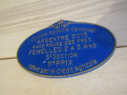 """French Large France Painted Metal Sign Blue and Metal 8"""" Agricole"""