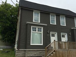 STUDENTS: 4 MONTH LEASE AVAIL! RENOVATED! 392 Barrie St