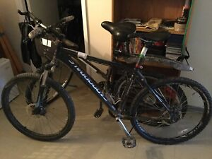 Cannondale Model Trail 5
