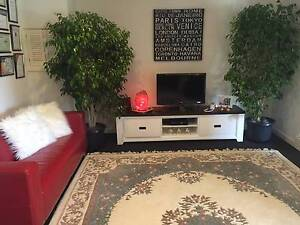 """HUGE """"Long pile off white to white rug, very good condition"""" Greenwood Joondalup Area Preview"""